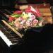 2019年3月以降ジャズピアニストエバのライブスケジュール 春の便りと共にイベント盛り沢山です